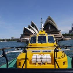 Sydney News